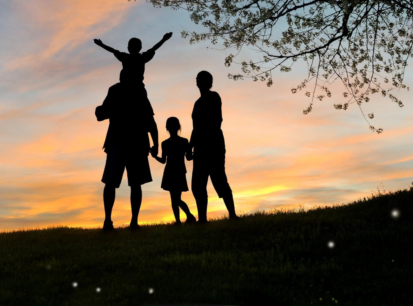 Silhouette of family holding hands walking in the park at sunset.